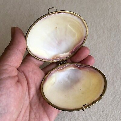 ANTIQUE Vintage CLAM Shell SEASHELL Brass HINGED Coin PURSE Pill TRINKET Box
