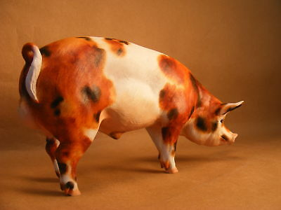 Breyer Custom/Cm North Light resin Berkshire Hog/Pig/Boar by PZ18