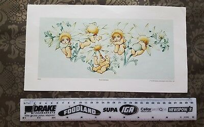 MAY GIBBS ☆ FLANNEL Flower BABIES ☆ 1993 PRINT MG005 ready to frame ☆ AUSTRALIAN