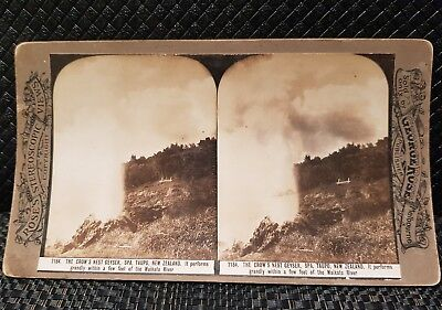 Rare New Zealand Crows Nest Geyser Taupo Stereoscope Card George Rose Melbourne