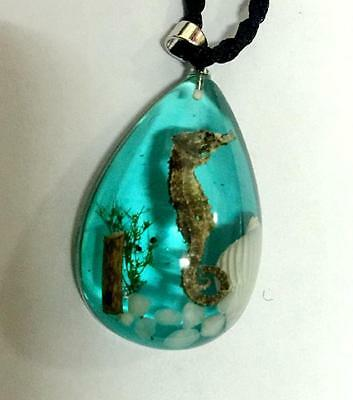 newjewelry fashion insect blue drop seadragon shell drop  pendants 001
