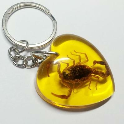 fashion insect scorpion yellow scorpion heart key-chains  bwj02