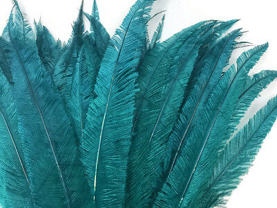 5 Pieces - Teal Blue Long Ostrich Nandu Trimmed Feathers Long Party Costume