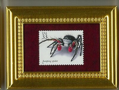 The Adorable Jumping Spider  Glass Framed Collectible Postage Stamp Masterpiece