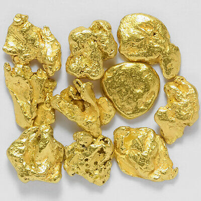 10 pcs Alaska Natural Placer Gold - Alaskan Gold - TVs Gold Rush (#G623-1)