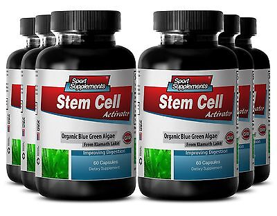 Algae Tablets - Stem Cell Activator 500mg - Boost Healthy Digestion Capsules 6B