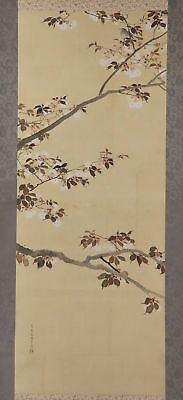 "JAPANESE HANGING SCROLL ART Painting ""Cherry blossoms and Bird""  #E9850"