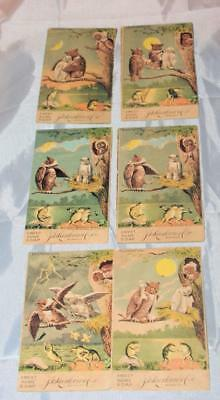 Set of Antique Victorian Trade Cards Owls & Frog Family Fight Makeup Larkin Soap