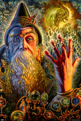 Wizard POSTER 61x91cm NEW