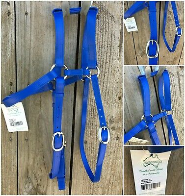 New extended headpiece barcoo bridle, full size