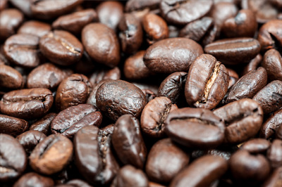 DIGITAL PHOTO PICTURE IMAGE WALLPAPER SCREENSAVER DESKTOP - Coffee Seed #07