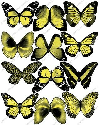 Cakeshop 12 x PRE-CUT Yellow Edible Butterfly Cake Toppers