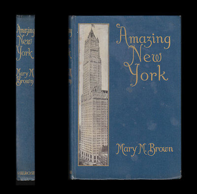 1913 Mary Macdonald Brown AMAZING NEW YORK - Thinking Woman SUFFRAGISTS Shopping