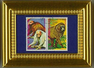 Gorilla And Balding Chimps - A Glass Framed Collectible Postage Masterpiece!