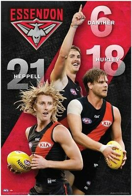 Essendon Bombers Players AFL Poster #2F