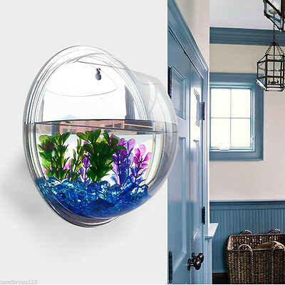 Wall Mount Hanging Fish Bowl Aquarium Acrylic Tank Plant Beta Hanger Home Decor