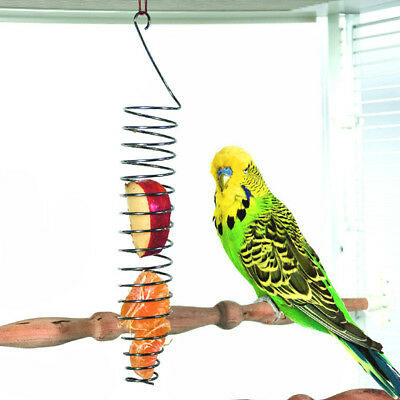 Stainless Steel Parrot Food Fruits Basket Millet Feeding Device Bird Cage Feeder