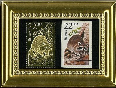 Brilliant Raccoon A Pcs Framed 22K Gold Reflection & Fdc Postmarked Original