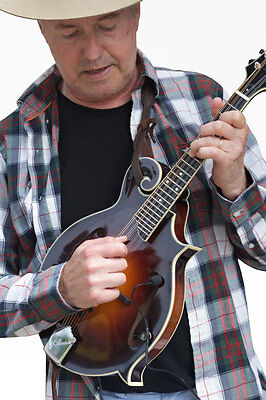 """OCTAVE MANDOLIN PICKUP  by Myers Pickups, """"The Feather"""""""