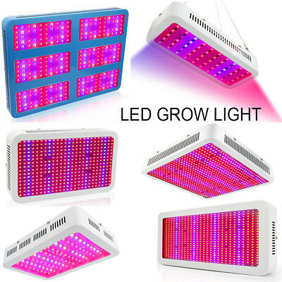 LED Grow Light Full Specturm 300W 400W 600W 800W 1000W 3000W Indoor Veg Bloom EU