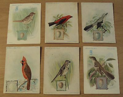"LOT 1890's-1920's Singer Sewing Cards AD Series~""The AMERICAN Singer/Song BIRDS"""