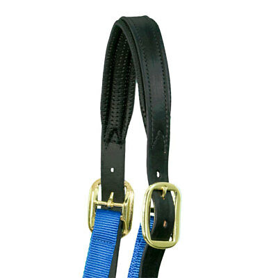 Premium, Padded, Chafeless , Leather Breakaway *Replacement Halter Crown*