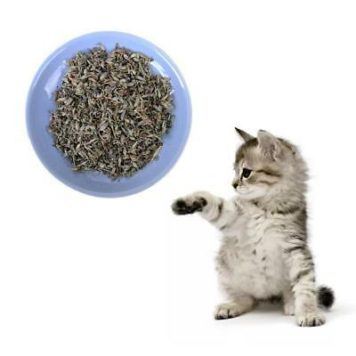 Cat Mint Natural Green Premium Catnip Cat Mint Menthol Flavor  Treats Toy~