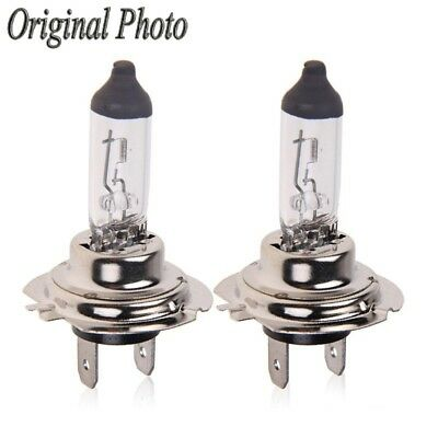 2X H7 100W 12V Halogen Lamps Car Lights Super White Fog Lamp Headlight Bulb