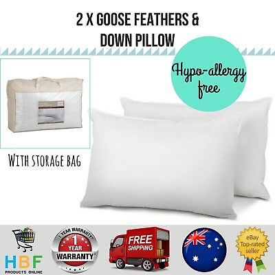 Giselle Bedding 2x Goose Down Feather Pillow Standard Size Cotton Case Pillows