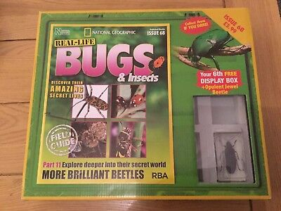 National Geographic Real-Life Bugs & Insects Magazine Issue 68
