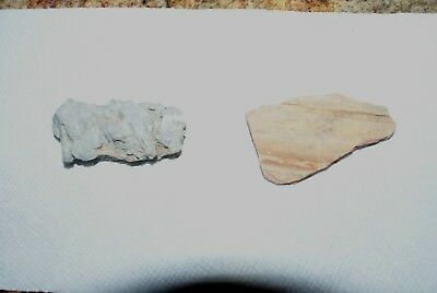Ancient Stones from Isreal   $3.88