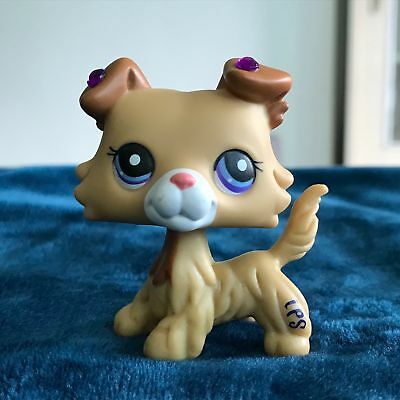 Littlest Pet Shop LPS Toys Figure Yellow Collie Dog Collection Rare Girl's Gift