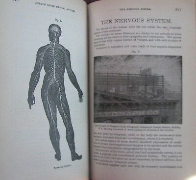 ~ Rare Antique Medical Book Great Colored Plates Over 100 years old! Diseases
