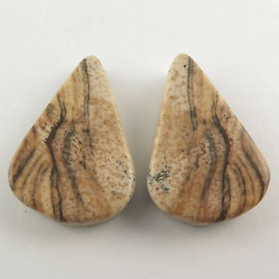 20.00 Cts Natural PICTURE JASPER Gemstone 1 Pair Pear Flat  21x14 mm For Earring