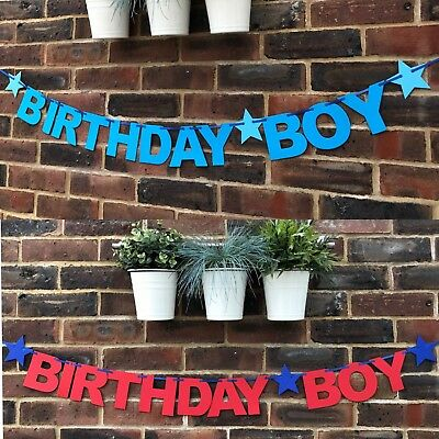 Birthday Boy Banner, Bunting 1st 2nd 3rd Birthday party decoration personalised