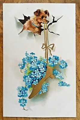 Vintage Terrier Dog Greetings Postcard holding golden shoe Embossed Very Cute!!!