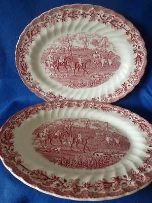 2 Myotts Country Life Pink Large Oval Dinner Plates Excellent Unused Condition & 2 MYOTTS Country Life Pink Large Oval Dinner Plates Excellent Unused ...