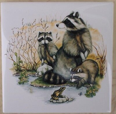 Ceramic Tile With Raccoon Coon Family Wildlife