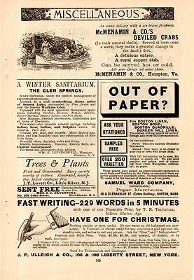 1890 Independent Fountain Pen Ad-229 Words In 5 Minutes