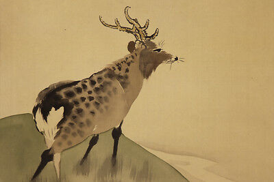 "JAPANESE HANGING SCROLL ART Painting ""Deer"" Asian antique  #E1268"