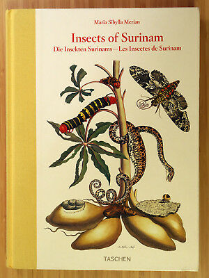Maria Sibylla Merian: Insects of Surinam / Die Insekten Surinams
