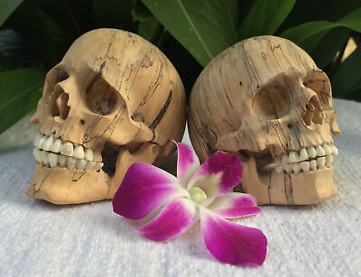 2 Hand Carved Sculpture Pair Set of 2 Human Skull Realistic flexible Jaws SMALL