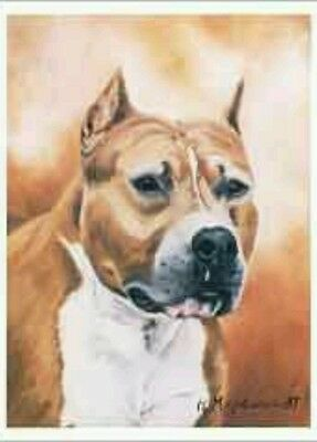 Ruth Maystead Dog Note Cards Am Staff Pitbull American Staffordshire Terrier