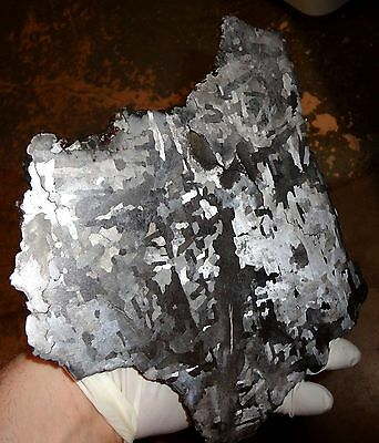 Beautiful Largest 1480 Gm Campo Del Cielo Etched Meteorite Slab!!!
