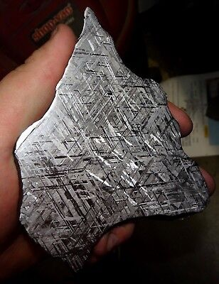 Beautiful Large 396 Gm Etched Gibeon Meteorite Slice From Namibia