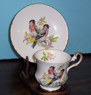 Rosina Cup And Saucer Birds On A Branch