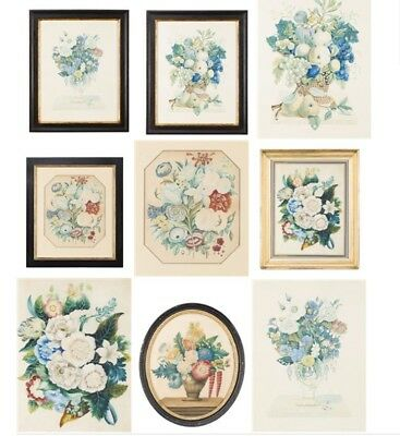 Group of 5 19th century watercolours of flowers and insects, period frames