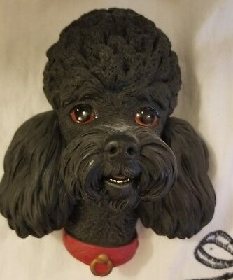 Vintage Bossons England,Wall Hanging Chalkware Head, Black Poodle