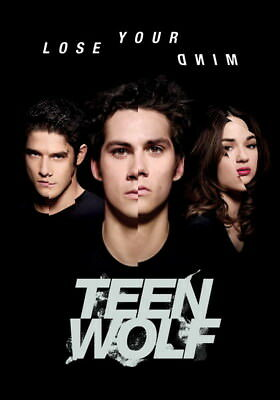 "026 Teen Wolf - MTV Blood Action Thriller TV Show 24""x34"" Poster"