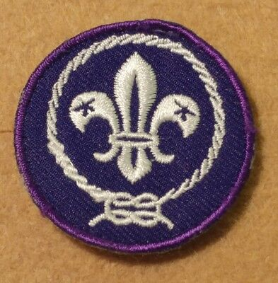 World Scouting Crest Patch (Pre-Owned) - Boy Scouts - Bsa World Crest  A01060
